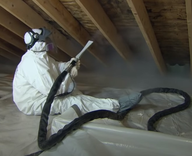 Mold Removal Services being performed in a dusty attic with black mold growing on the plywood